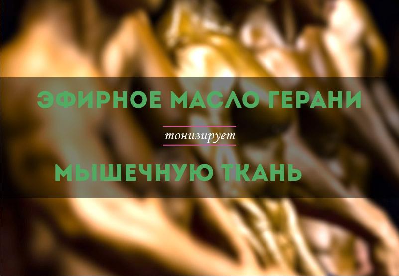 efirnoe-maslo-gerani-dlja-myshc-kupit-01.jpg