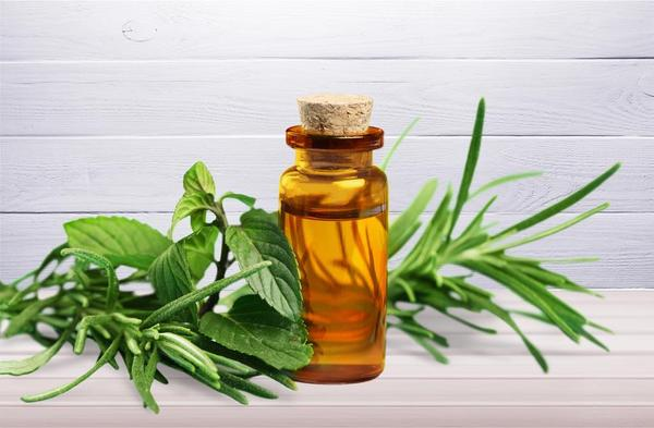 Tea-Tree-Essential-Oil-For-Toenail-Fungus-_1112867228-2_grande.jpg